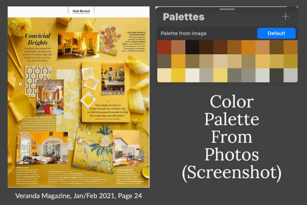Setting Up A Color Palette From Photos or Screenshot