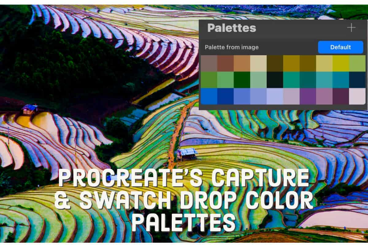Procreate Capture and Swatch Drop Palettes