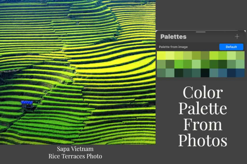 Procreate Color Palettes From Photos