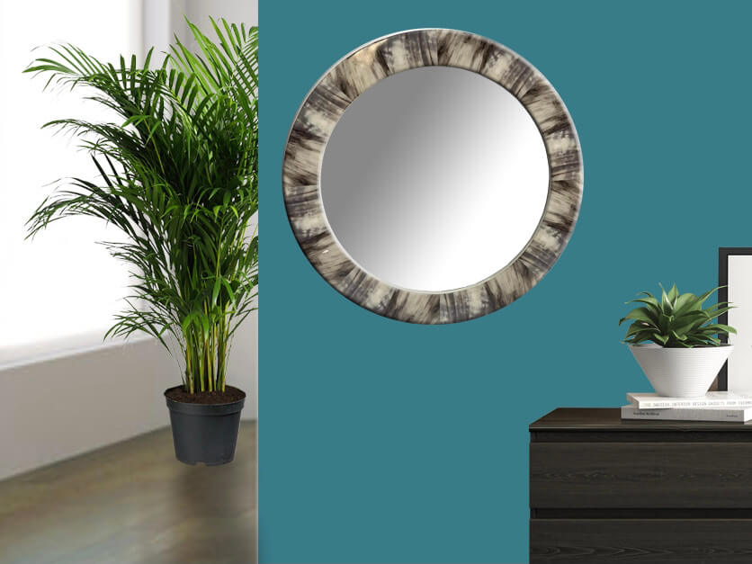 Faux Horn Mirror on wall